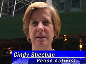Cindy Sheehan Endorses